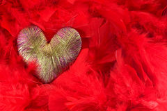 hjärta av röda fjädrar Fotografering för Bildbyråer