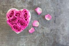 Hjärta av rosor i rosa färger på grå bakgrund royaltyfri fotografi
