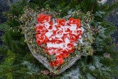 Hjärta av rosor och snö Arkivbild