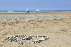 Hjärta av skal på stranden Royaltyfri Bild
