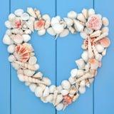 Hjärta av snäckskal Arkivfoton