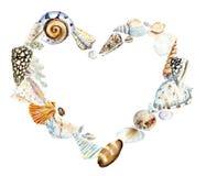 Hjärta av snäckskal för flygillustration för näbb dekorativ bild dess paper stycksvalavattenfärg vektor illustrationer