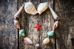Hjärta av snäckskal, skal, skal, havsstjärnor på ett trä Royaltyfria Bilder