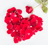 Hjärta av steg Royaltyfria Foton