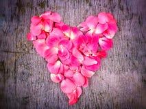 Hjärta av väcker kronblad Arkivfoton