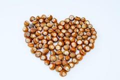 Hjärta består av isolerade hasselnötter Royaltyfria Foton