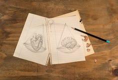 Hjärta eller hjärna Arkivbild