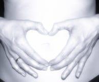 Hjärta för gravid kvinnahavandeskapbegrepp på magen Royaltyfri Foto
