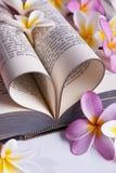 Hjärta formad bibel Royaltyfria Bilder