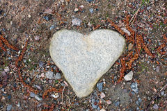 hjärta formad sten Royaltyfria Bilder