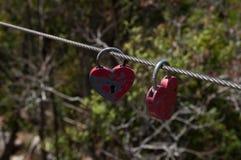 Hjärta formade lås Arkivbilder