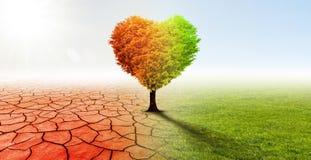 Hjärta format träd i ett overkligt landskap arkivbilder