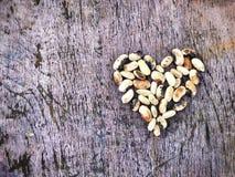 hjärta från bönor Royaltyfria Bilder