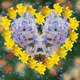 Hjärta från blommor Royaltyfria Foton