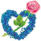 Hjärta från blommor glömma-me-med en ro Arkivfoto