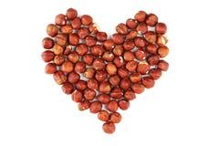 Hjärta från hasselnötter som isoleras på vit Arkivfoton