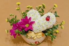 Hjärta från krysantemum Royaltyfria Foton