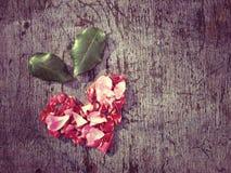 hjärta från patels Royaltyfri Foto
