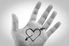 hjärta gömma i handflatan Arkivfoto