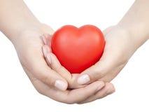 Hjärta gömma i handflatan in Arkivbild