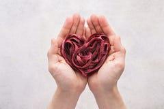 Hjärta gjorde av rödbetagrönsakpasta i händer sund mat royaltyfri fotografi