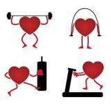 Hjärta i en idrottshall Royaltyfri Foto