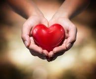 Hjärta i hjärtahänder värme bakgrund royaltyfria bilder