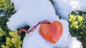 Hjärta i solskenet arkivfoton