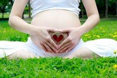 Hjärta med den gravida momen i trädgården Arkivfoton