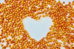 Hjärta med havsbuckthornen Royaltyfri Fotografi