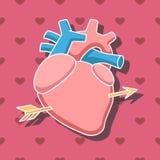 Hjärta med pilen vektor illustrationer