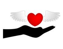 Hjärta med vingar över handen Arkivfoton