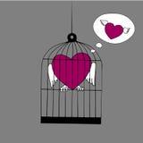 Hjärta med vingar som sitter i buren och tänker om frihet Arkivfoto