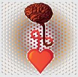 Hjärta och hjärna Arkivbild