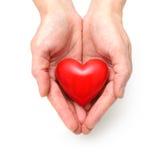 Hjärta på de mänskliga händerna Royaltyfri Foto