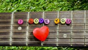 Hjärta på halsgitarrer och rader på gräset Royaltyfri Bild