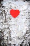 Hjärta på tree royaltyfria bilder