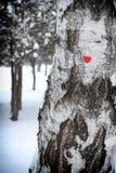 Hjärta på tree arkivbild