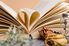Hjärta som formas av sidan för gammal bok med torra bruna rosor i tappning c royaltyfri foto