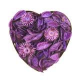 Hjärta som fylls med medleypotpurri arkivfoto