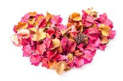 Hjärtaform av blommasidor Royaltyfri Bild