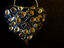 Hjärtaform med snäckskal Arkivbilder