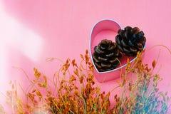 Hjärtaform, sörjer kotten och torkar blommor för säsongsbetonat begrepp för beröm royaltyfria foton