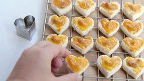 Hjärtaformkakor med kasjun eller den Singapore kakan på vit bakgrund för design för begrepp för valentindagbeståndsdel stock video