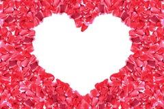 Hjärtaformram av den röda rosen Royaltyfria Foton