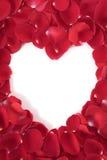 Hjärtaformram med kronblad för röda rosor Fotografering för Bildbyråer