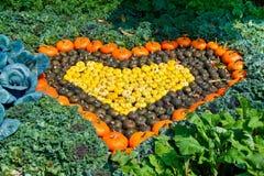 hjärtagrönsaker Arkivfoto