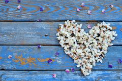 Hjärtakrans av den vita akacian som blomstrar blommakronblad Dag för födelsedag-, moder` s, kort för dag, för mars 8, för bröllop Arkivfoto