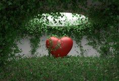 Hjärtamurgrönarum Royaltyfria Bilder
