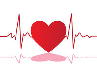 Hjärtatakt av förälskelse Arkivfoto